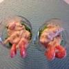 Rekesalat med asparges og gressløk